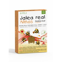Bipole Jalea Real Niños 300 mg · Intersa · 20 Ampollas