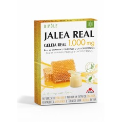Bipole Jalea Real 1.000 mg · Intersa · 20 Ampollas